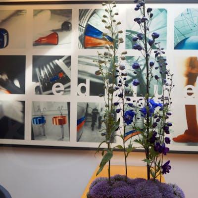 Gallerie-Bild